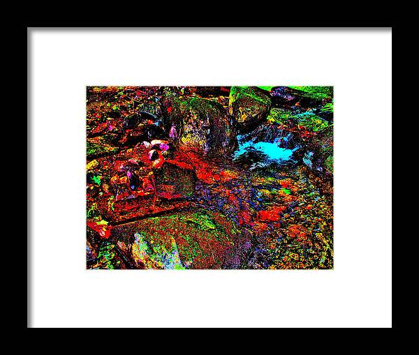 Landscape Framed Print featuring the photograph Brook Texture 22 by George Ramos