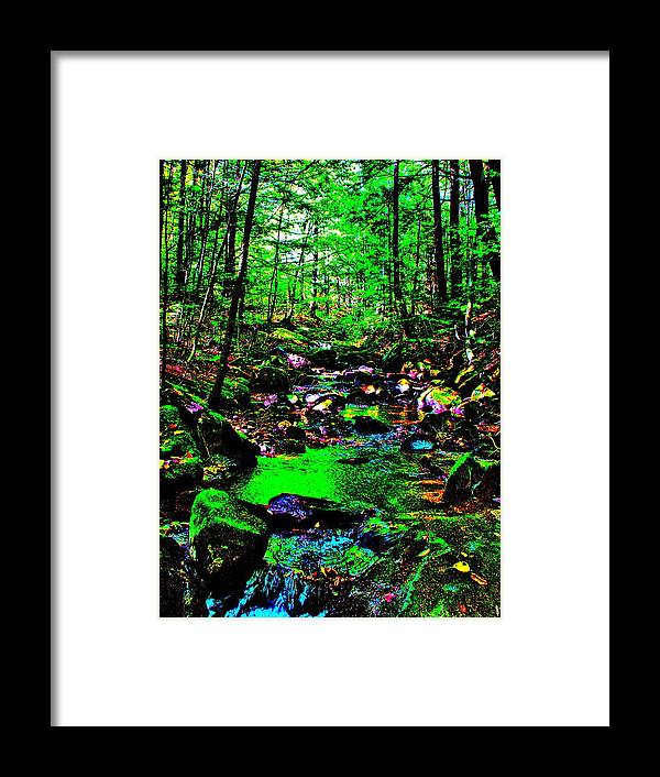 Landscape Framed Print featuring the photograph Brook Texture 24 by George Ramos