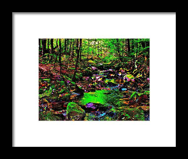 Landscape Framed Print featuring the photograph Brook Texture 25 by George Ramos