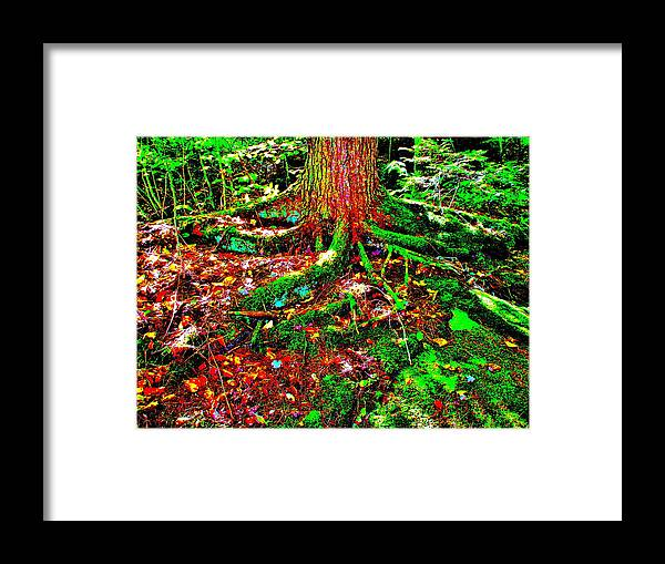Landscape Framed Print featuring the photograph Brook Texture 3 by George Ramos