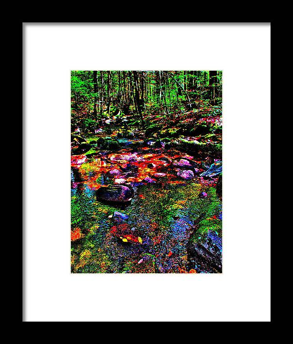 Landscape Framed Print featuring the photograph Brook Texture 34 by George Ramos