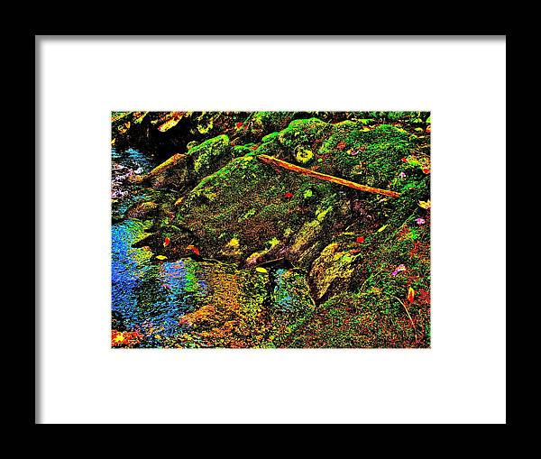 Landscape Framed Print featuring the photograph Brook Texture 49 by George Ramos