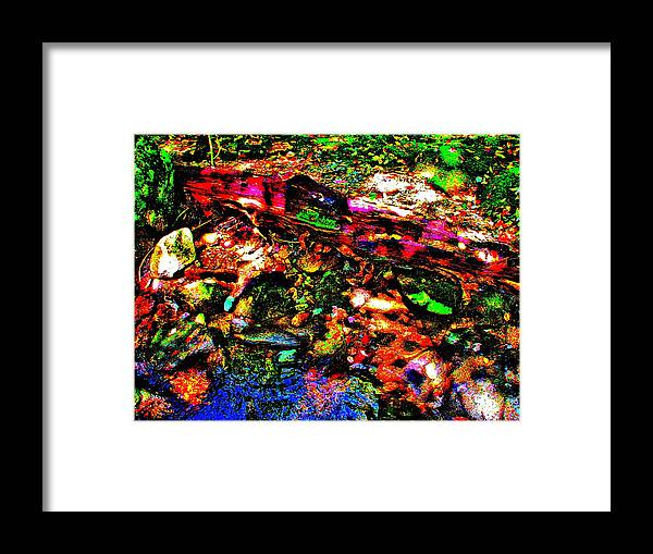 Landscape Framed Print featuring the photograph Brook Texture 54 by George Ramos
