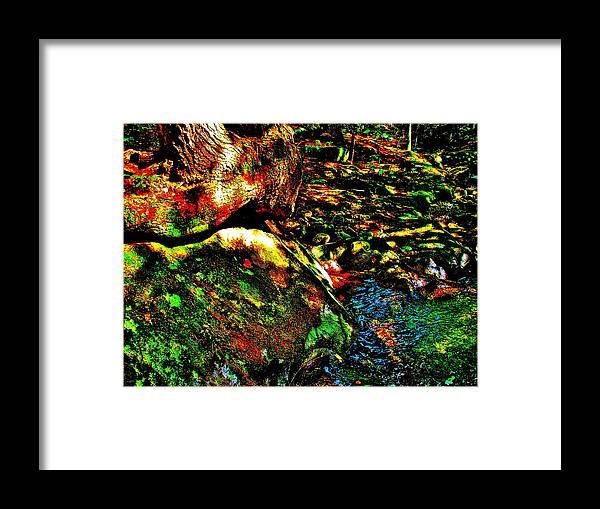 Landscape Framed Print featuring the photograph Brook Texture 58 by George Ramos
