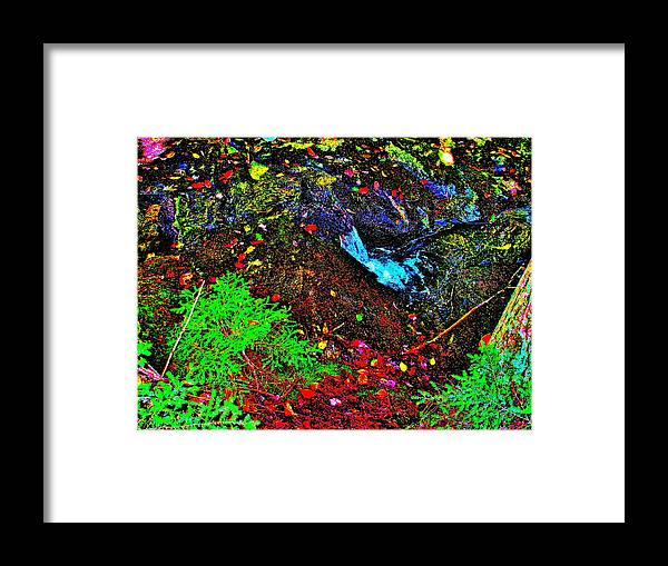 Landscape Framed Print featuring the photograph Brook Texture 62 by George Ramos