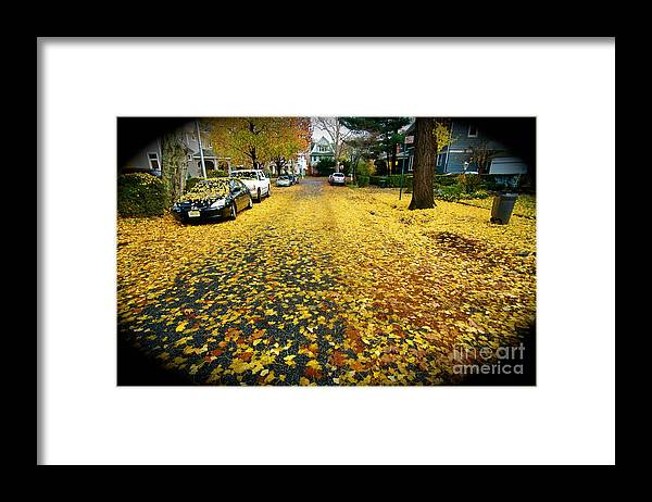 Fall Leaves Framed Print featuring the photograph Brooklyn New York by Mark Gilman