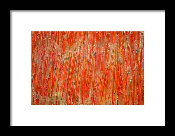 Red Framed Print featuring the photograph Brush View by Bella Photography