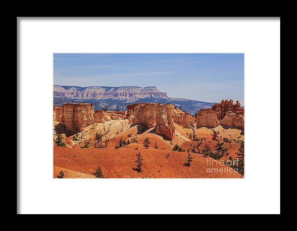 Landscape Framed Print featuring the photograph Bryce Beauty by Scotts Scapes