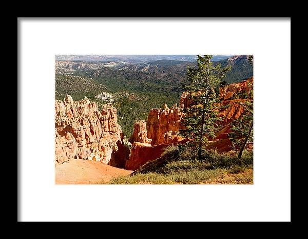 State Route 63 Framed Print featuring the photograph Bryce Entry 05 by John Appleby