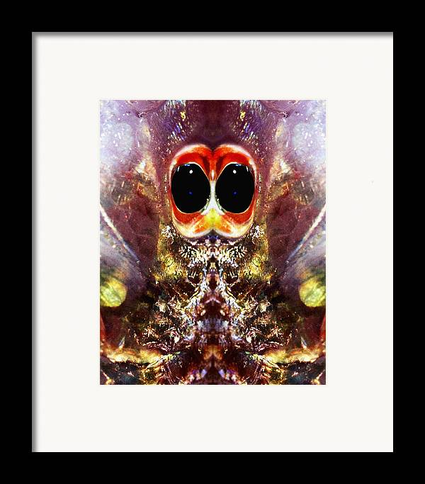 Abstract Framed Print featuring the photograph Bug Eyes by Skip Nall