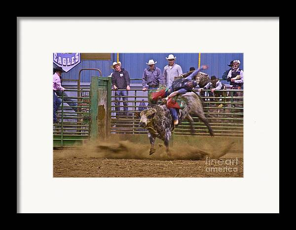 Photography Framed Print featuring the photograph Bull Rider 1 by Sean Griffin