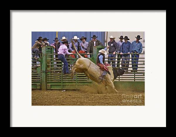 Photography Framed Print featuring the photograph Bull Rider 2 by Sean Griffin