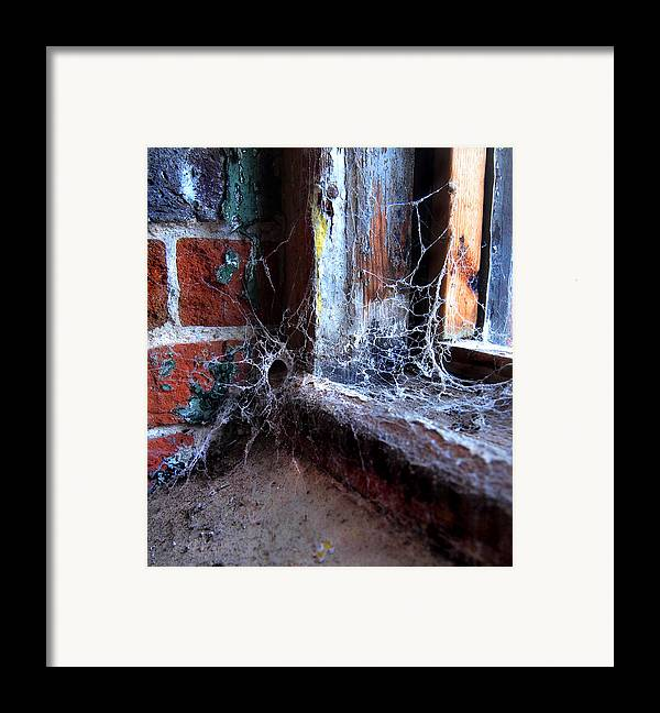 Gastonia Photographs Framed Print featuring the photograph Burial Ground by Tammy Cantrell
