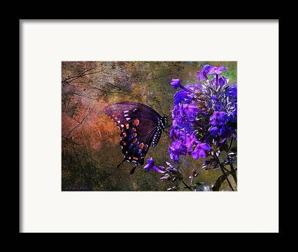 J Larry Walker Framed Print featuring the digital art Busy Spicebush Butterfly by J Larry Walker