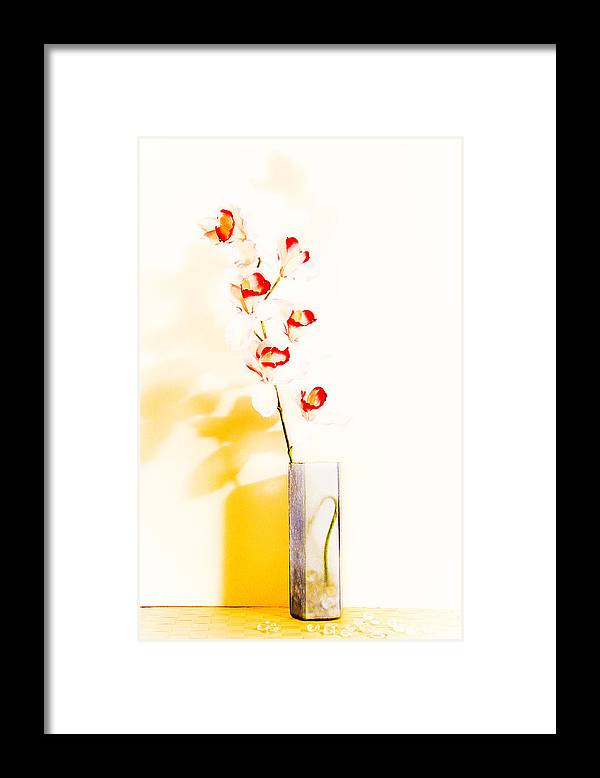Flowers Framed Print featuring the photograph By The Window by Shani Soils