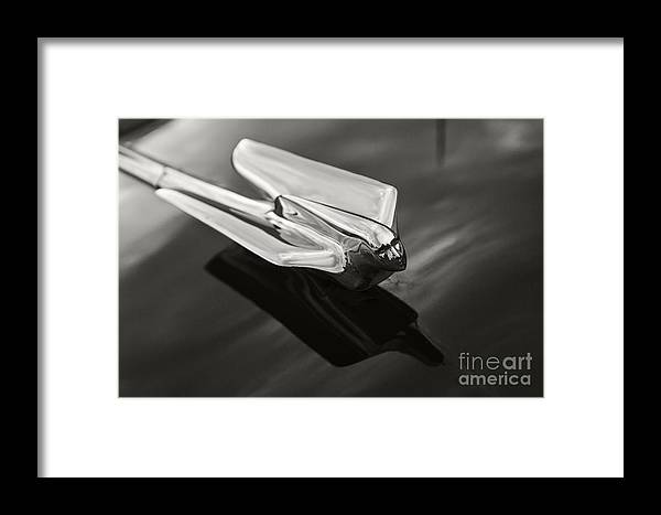 Classic Framed Print featuring the photograph Cadillac Ornament by Dennis Hedberg