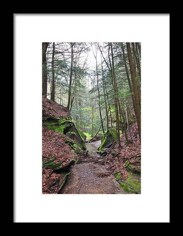 Hocking Hills Framed Print featuring the photograph Camusfearna Gorge 5 by Peter McIntosh