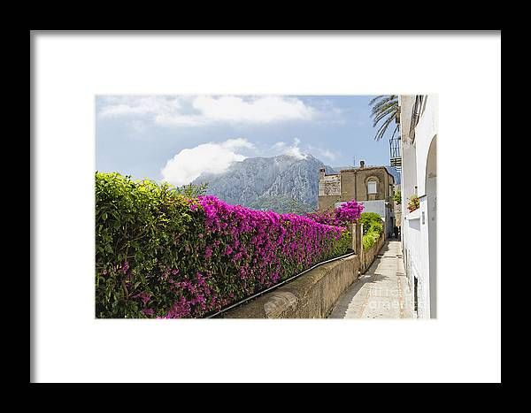 Southern Italy Framed Print featuring the photograph Capri Alleyway by George Oze