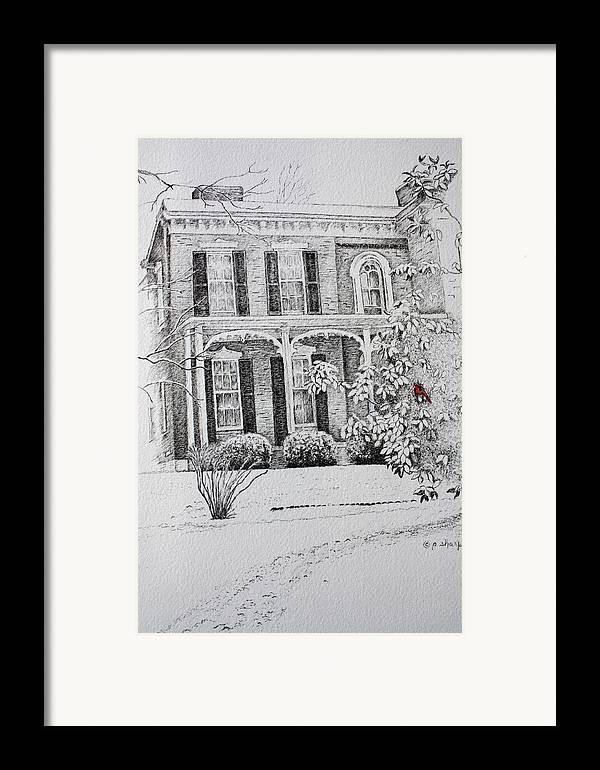 Historic Home Framed Print featuring the drawing Cardinal by Patsy Sharpe