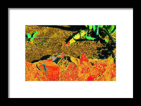 Anthropology Framed Print featuring the photograph Carlos Visits Don Juan In The Desert by Louis Nugent