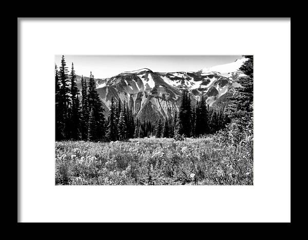 Mount Rainier Framed Print featuring the photograph Cascade Mountain Range by David Patterson