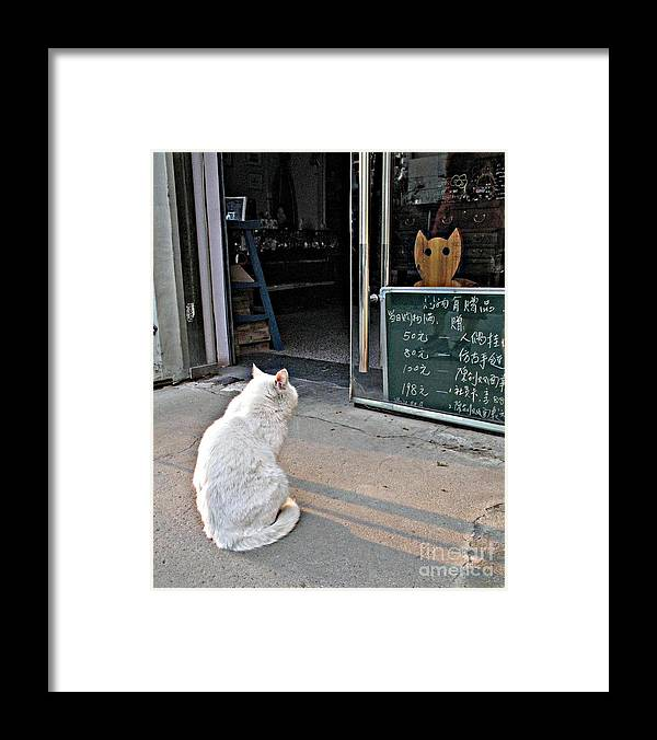 Cat Framed Print featuring the photograph Cat In The Window by Louise Peardon