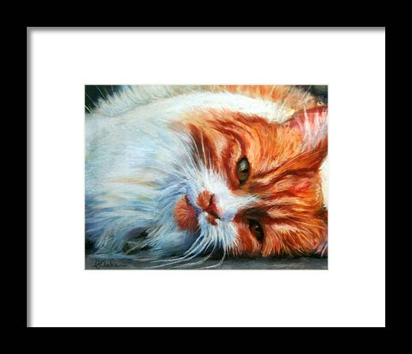 Cat Framed Print featuring the painting Cat Nap by PJ Acker
