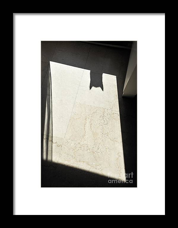 Mystery Framed Print featuring the photograph Cat's Shadow by Sami Sarkis