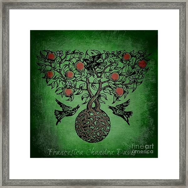 Celtic Tree Of Life Framed Print By Sacred Muse