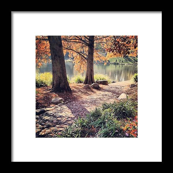 Europe Framed Print featuring the photograph Central Park Early Morning by Randy Lemoine