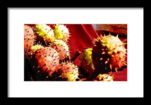 Seeds Framed Print featuring the painting Chestnut Pods 2 by Renate Nadi Wesley