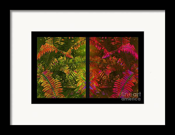 Christmas Framed Print featuring the photograph Christmas Fern Diptych by Judi Bagwell