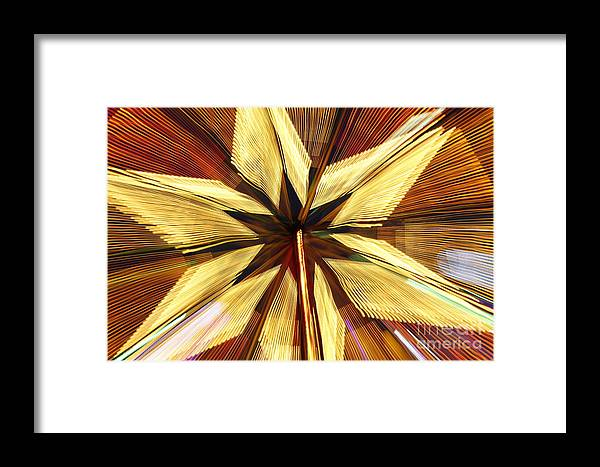 Christmas Framed Print featuring the photograph Christmas Star by Urban Shooters