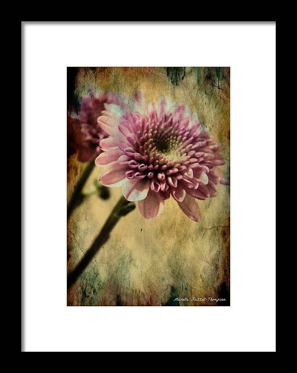 Chrysanthemum Framed Print featuring the digital art Chrysanthemum by Michelle Frizzell-Thompson