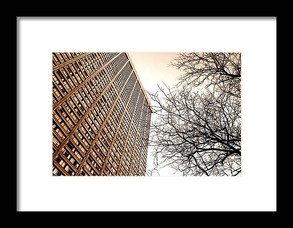 City Framed Print featuring the photograph City Vs Nature by Valentino Visentini