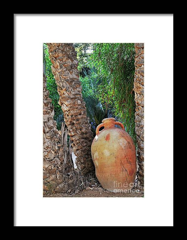 Freshness Framed Print featuring the photograph Clay Jar By Palm Tree by Sami Sarkis