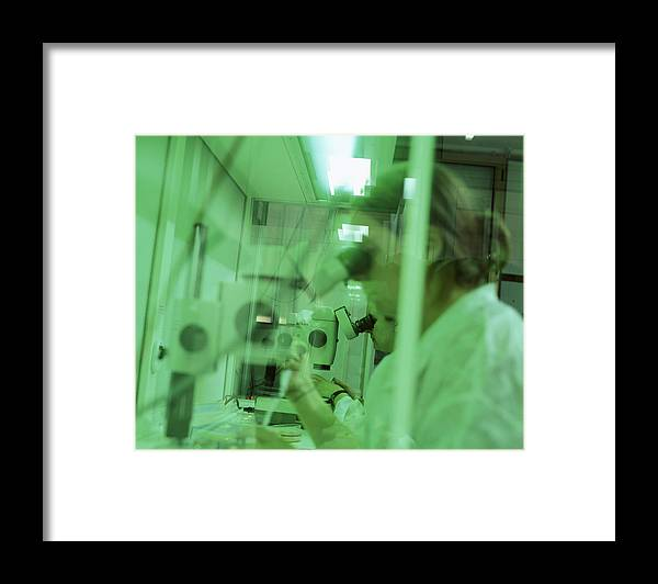 Genetics Framed Print featuring the photograph Cloning Research by Mauro Fermariello