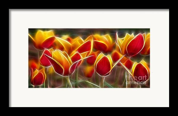 Cluisiana Tulips Framed Print featuring the digital art Cluisiana Tulips Fractal by Peter Piatt