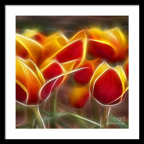 Cluisiana Framed Print featuring the digital art Cluisiana Tulips Triptych Panel 2 by Peter Piatt