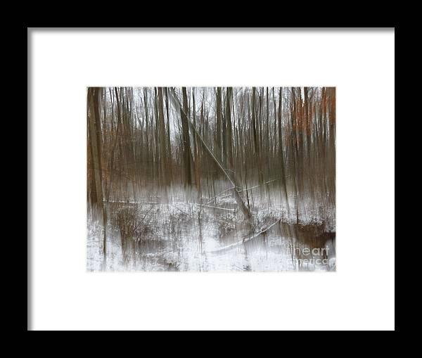Nature Framed Print featuring the photograph Cold woods abstract by Rrrose Pix