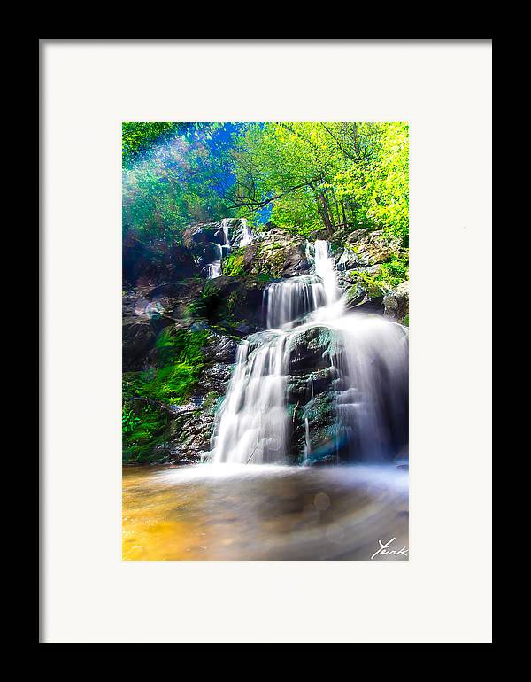 Landscape Framed Print featuring the pyrography Colorful Stream by Shane York