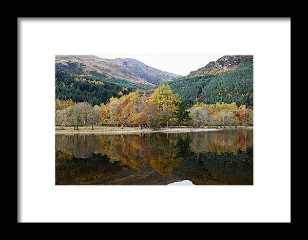 Artistic Framed Print featuring the photograph Colourful Trees by Gouzel -