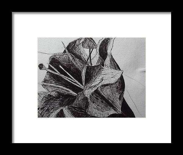 Flower Framed Print featuring the drawing Colourless Nature by Sharon Tuff