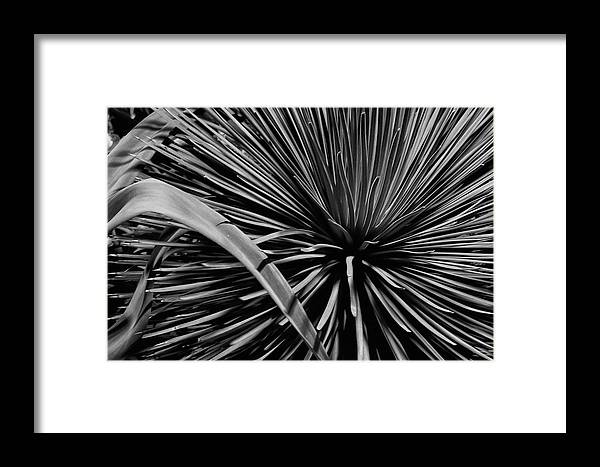Guy Whiteley Framed Print featuring the photograph Converging by Guy Whiteley