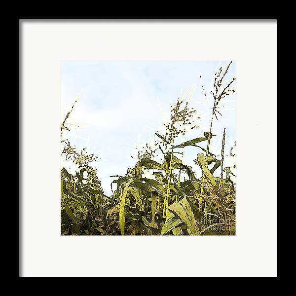 Corn Framed Print featuring the painting Corn In Summer by Artist and Photographer Laura Wrede