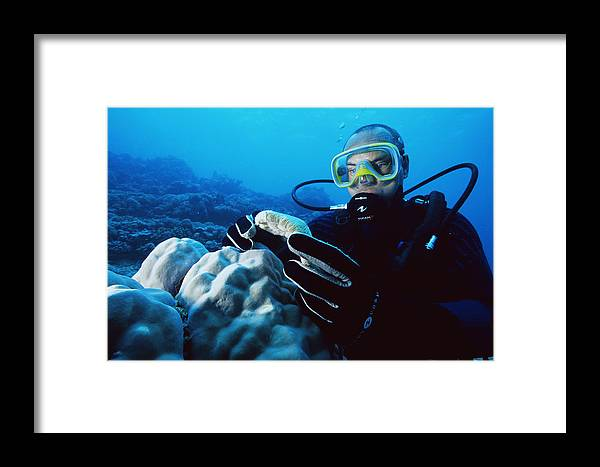 Daniel Rocher Framed Print featuring the photograph Cosmetic Researcher by Alexis Rosenfeld