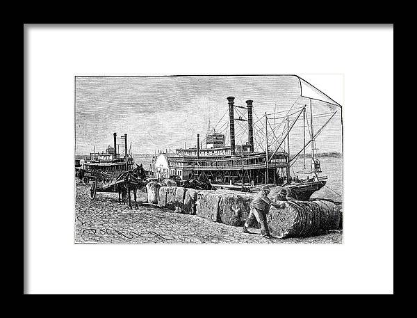 Human Framed Print featuring the photograph Cotton Industry, Early 20th Century by