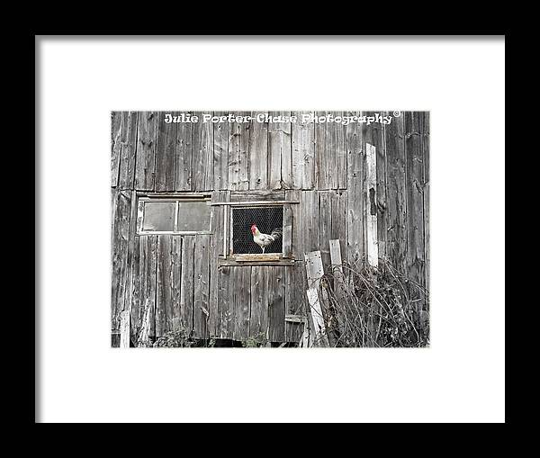 Country Living Elliotsville Maine Piscataquis County Rural Old Farm House Barn Rooster Framed Print featuring the photograph Country Living by Julie Porter-Chase