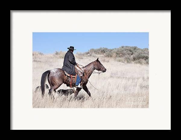 Cowboy Framed Print featuring the photograph Cowboy On Horseback by Cindy Singleton