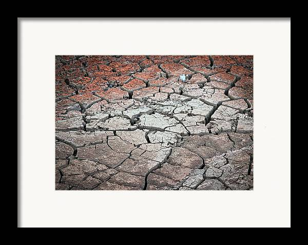Desert Framed Print featuring the photograph Cracked Earth by Athena Mckinzie